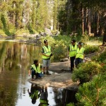Volunteers Examine Yosemite Creek - Copy (2)